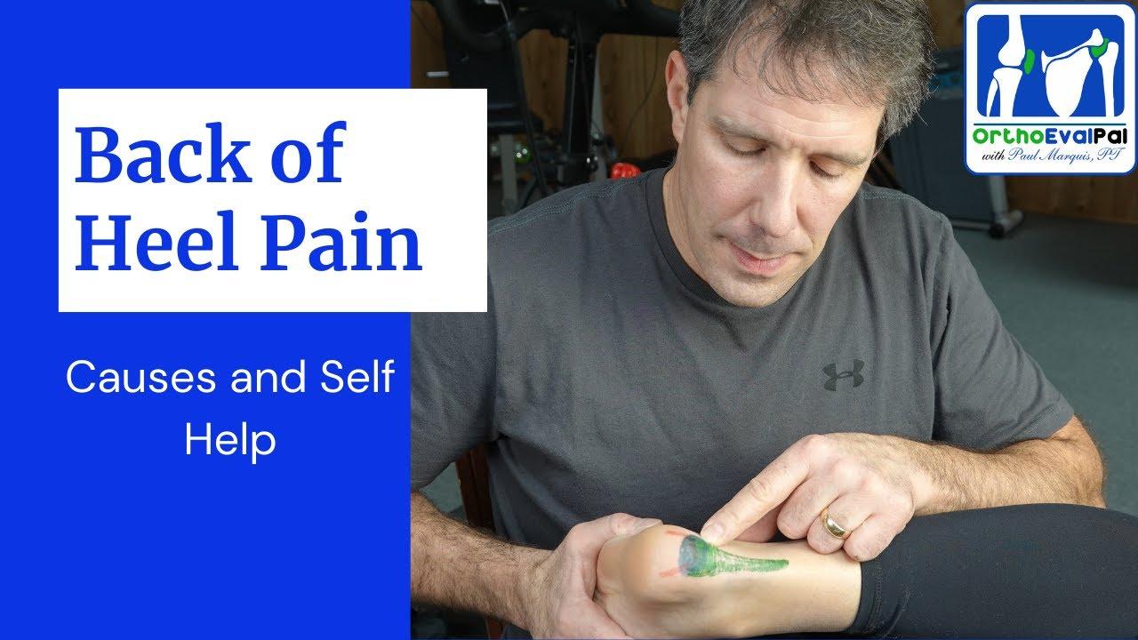 Download Back of the heel pain (Bone, Tendon & Bursa)