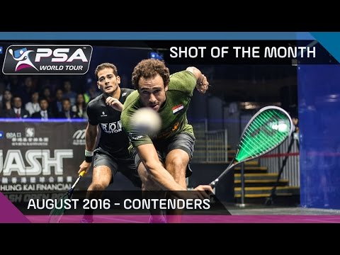 Squash: August 2016 Shot Of The Month - The Contenders