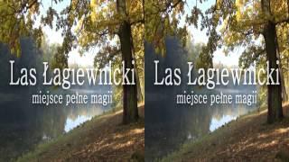 Las Łagiewnicki - miejsce pełne magii (3D)