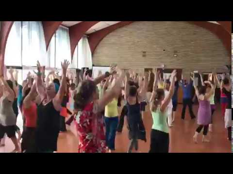 2017 02 Nia open Class in Johannesburg (Brown Belt) Part I