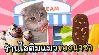 ร้านไอติมแมวของนาซ่า