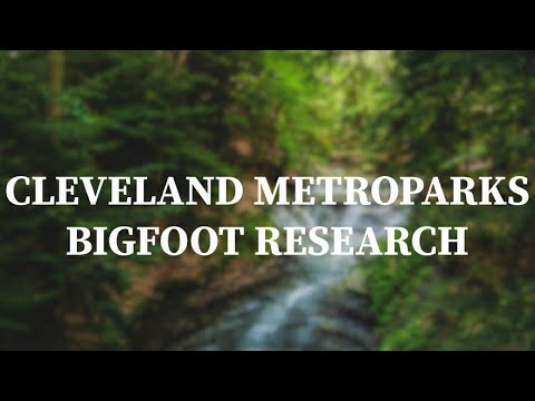 Discussing Bigfoot Tree Structures in Northern Ohio