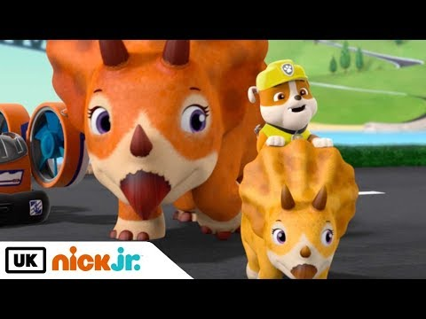 The PAW Patrol's Mighty Twins SAVE the Day! 🐔🐶  PAW Patrol   Nick Jr. from YouTube · Duration:  7 minutes 16 seconds