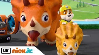 Paw Patrol | Pups Bark with Dinosaurs | Nick Jr. UK