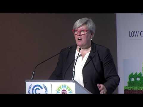 Low-Carbon Transport: Low-Carbon Fuels