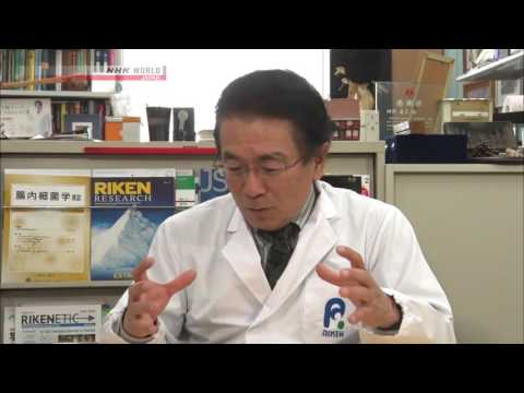Gut Flora  Fighting Lifestyle Related Diseases   Medical Frontiers   Video On Demand   NHK WORLD   E