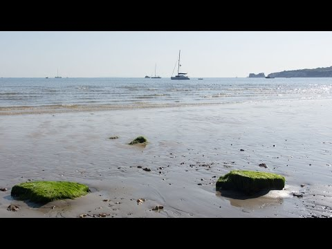 UK Day Walk 12: Studland Bay