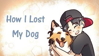 How I Lost My Dog