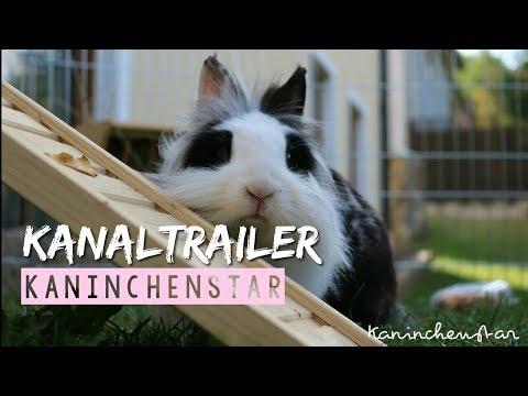 Das sind wir! 🙋💕 - Kanaltrailer   Kaninchenstar