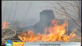 С 1 апреля на юге региона вводится особый противопожарный режим