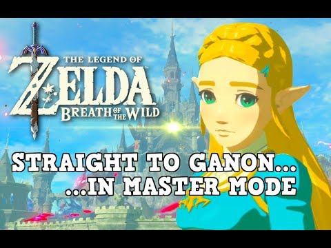 Killing EVERYTHING in Hyrule Castle (Breath of the Wild Master Mode)