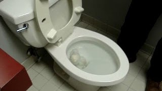How to fix, repair a clogged toilet, trap clog remove trick