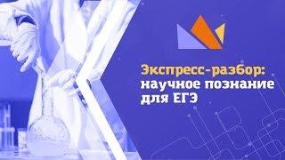 Экспресс-разбор: научное познание для ЕГЭ