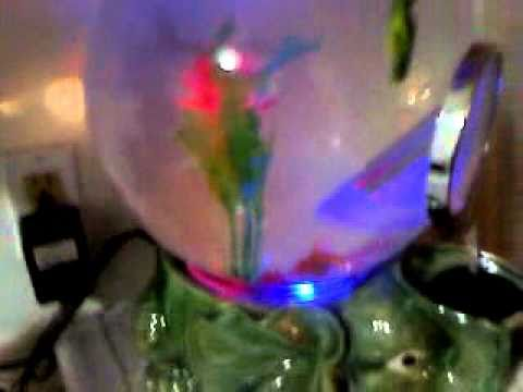 MAGIC GLOBE AQUARIUM
