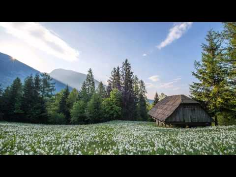 3 Hours of Relaxing Celtic Music: Harp & Flute | Meditation, Relaxation & Study