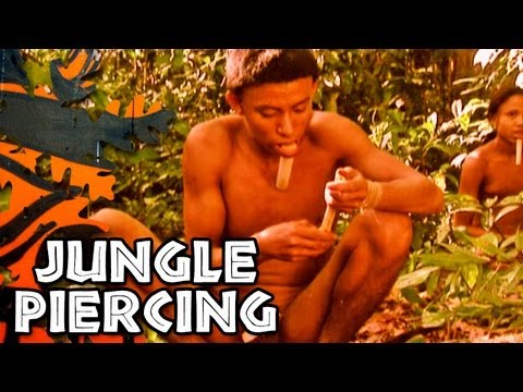 Jungle Body Piercing
