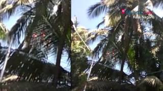 Fire breaks out near Matoshree | Mumbai Live