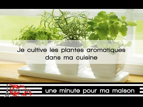 des plantes aromatiques dans ma cuisine youtube. Black Bedroom Furniture Sets. Home Design Ideas