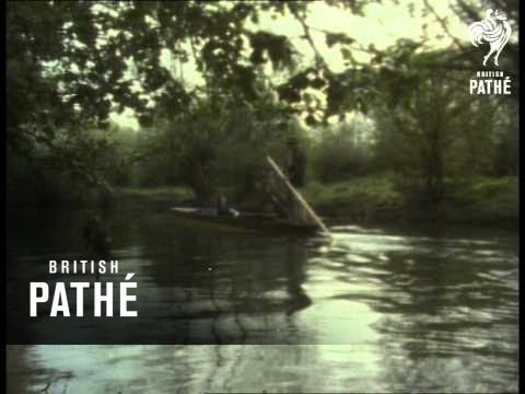 Tugs, Trees And River (1970-1979)