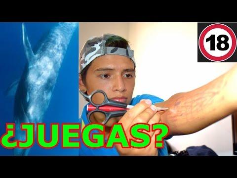 CUMPLIENDO LOS RETOS DE EL RETO DE LA BALLENA AZUL | Blue Whale Suicide Game