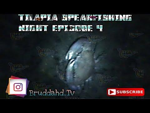 SPEARFISHING HUGE Samoan Crabs (MUD CRABS) | TILAPIA SPEARFISHING NIGHT EP.4