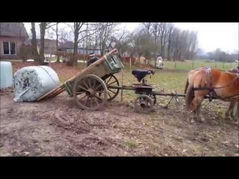 Rundballen füttern. Mit Pferden, für Pferde