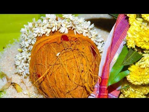 Kalyana Mangala Isai – Marriage Songs on Nadaswaram - Vinayaka Ninnu -T.E.Palaniswamy