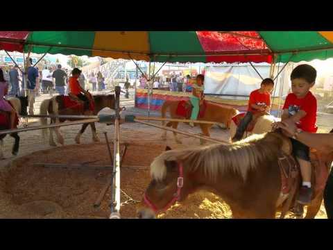Sun city fair $$pony rides