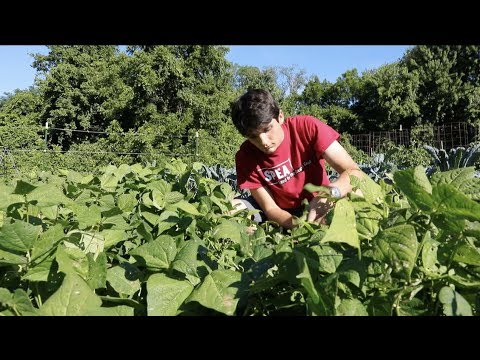IU Corps: Campus Farm