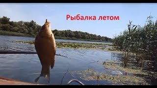 видео Рыбалка в июле