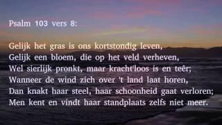 Psalm 103 vers 8 en 9 - Gelijk het gras is ons kortstondig leven