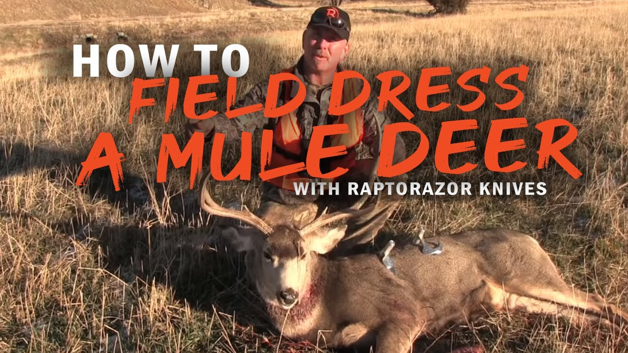 How to perform the gutless method on big game