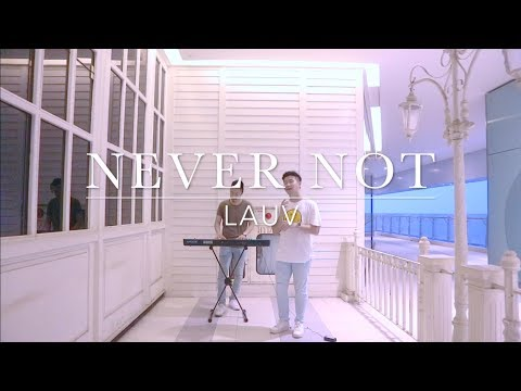 Never Not - LAUV | DWA Cover