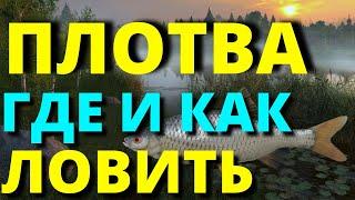 ПЛОТВА ГДЕ И КАК ЛОВИТЬ Оз КОМАРИНОЕ РУССКАЯ РЫБАЛКА 4 Russian Fishing 4 НА РЫБАЛКУ