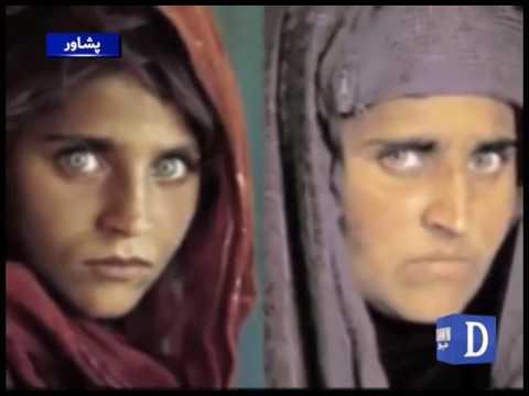 جعلی شناختی کارڈ بنوانے والی مشہور افغان خاتون گرفتار