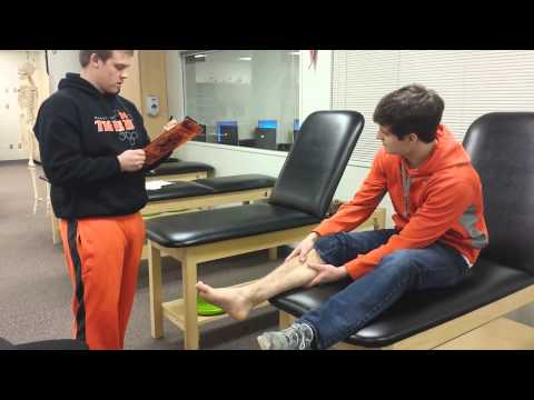 Sports Med Grade 2 Ankle Sprain
