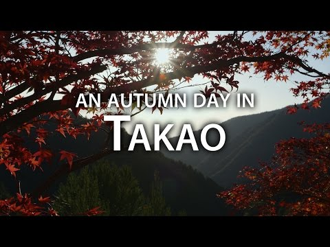 Beautiful Kyoto: Autumn Adventures at Mt.Takao