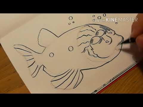 Macropinna Microstoma: Inking The Barreleye Fish