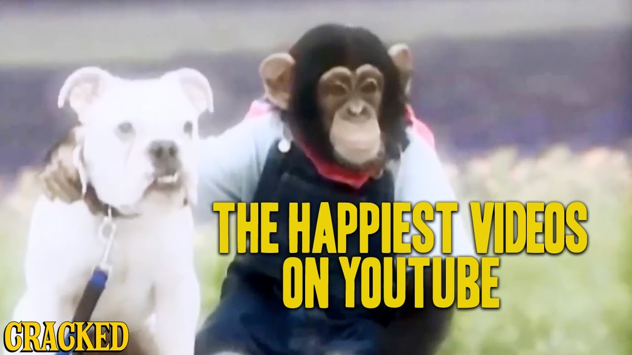 the-happiest-videos-on-youtube