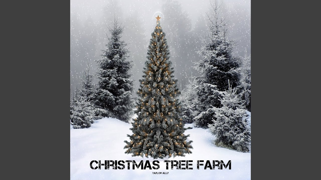 Christmas Tree Farm Chords Chordify