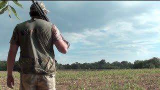 Dove Hunting with a Benelli Nova 12ga Shotgun