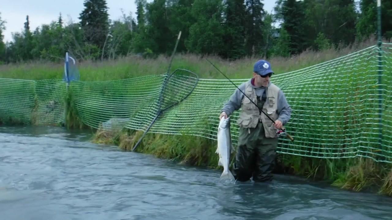 First timers get help fishing the kenai river sockeye for Kenai river fish counts