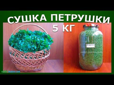 Сушка петрушки – 5 кг
