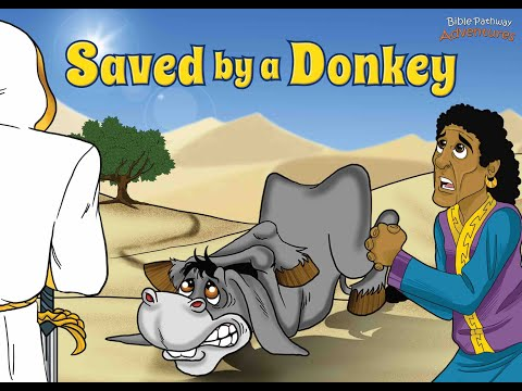 Saved By A Donkey | The Adventures of Balaam