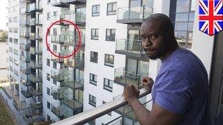 видео Пчелы на балконе