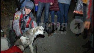 Новый хозяин разыскивается для спасенной в Хабаровске собаки.MestoproTV