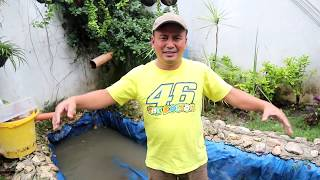 FISH RESCUE ! Heavy rain destroyed my pond!😱