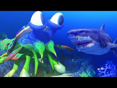 GIANT MANTIS SHRIMP vs GREAT WHITE SHARK - Feed and Grow Fish - Part 35 | Pungence