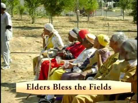 African Hebrew Israelite's Organic/Biodynamic Farm