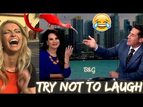 Hilarious News Bloopers – Female Anchors Gone Crazy 2018